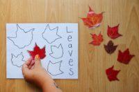Laminated Leaf Puzzle Two Ways
