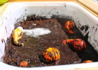 PUMPKIN PATCH MESSY PLAY