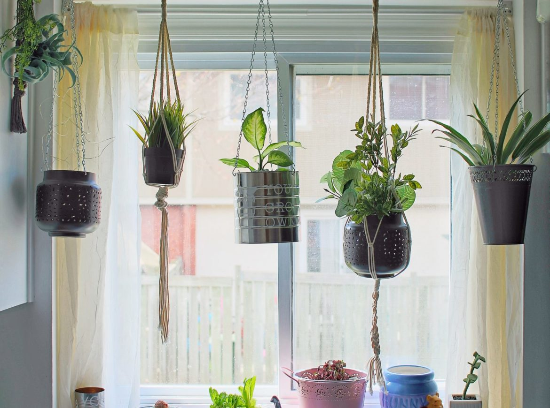 PLANT SHELF DIY